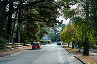 BNPS.co.uk (01202 558833)<br /> Pic: MaxWillcock/BNPS<br /> <br /> Pictured: Links Road in Branksome Park.<br /> <br /> Police hunting two women dubbed the 'Rolex Rippers' have released CCTV images of the prime suspects.<br /> <br /> The duo are believed to have targeted at least 21 elderly men in affluent areas of southern England for their expensive Rolex watches.