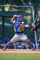Toronto Blue Jays catcher Ryan Hissey (33) during an instructional league game against the Atlanta Braves on September 30, 2015 at the ESPN Wide World of Sports Complex in Orlando, Florida.  (Mike Janes/Four Seam Images)
