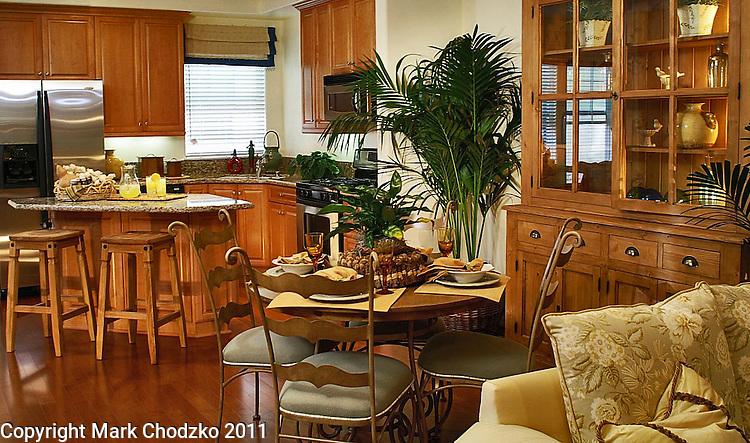 New home interior for Anastasi Development.