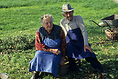 Grabe, Slovenia. Elderly farming couple with blue aprons in a field.