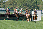 09-25-10: Four Year Olds and up jump the fences and manuever around a loose horse during the running of Metcalf Memorial Novice Stakes.