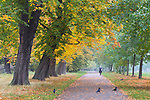 Great Britain, England, London: Hyde Park in Autumn   GBR, Grossbritannien, England, London: Herbst im Hyde Park
