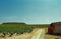 Chablis: Les Preuses, grand cru vineyard, Bourgogne