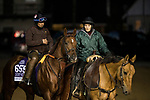 October 29, 2018 : Giant Expectations, trained by Peter A. Eurton, exercises in preparation for the Breeders' Cup Dirt Mile  at Churchill Downs on October 29, 2018 in Louisville, Kentucky. Evers/ESW/CSM