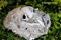 OW09-508z  Owl Pellet with animal bones inside, Great Horned Owl