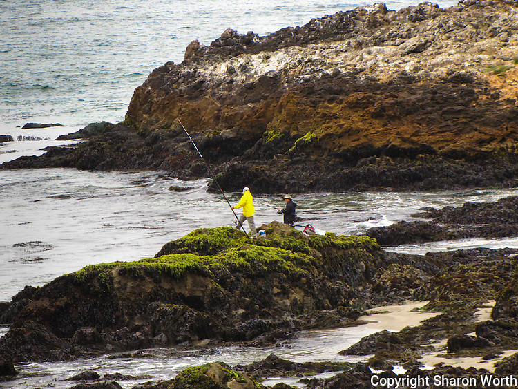 Two fishermen on the rocks at Pescadero State Beach, California.
