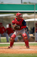 GCL Cardinals catcher Zade Richardson (31) during a Gulf Coast League game against the GCL Marlins on August 12, 2019 at the Roger Dean Chevrolet Stadium Complex in Jupiter, Florida.  GCL Marlins defeated the GCL Cardinals 9-2.  (Mike Janes/Four Seam Images)