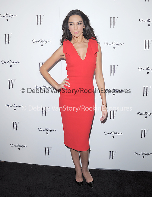 Terri Seymour attends The W Magazine – the Best Performances Issue Celebration held at The Chateau Marmont in West Hollywood, California on January 13,2012                                                                               © 2012 DVS / Hollywood Press Agency