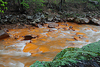 """Muddy Creek, close to its confluence with the Cheat River, is heavily polluted by acid mine drainage (AMD)  from coal mines in the area abandoned decades ago. The orange sludge staining rocks in Muddy Creek, commonly known as """"yellow boy"""", is caused by oxidation of sulfide minerals closely associated with coal seams, particularly pyrite, which produces sulfuric acid that in turn precipitates iron into the water. The increased acidity and dissolved metals effectively result in a stream devoid of living things. The Cheat River watershed, West Virginia, USA."""