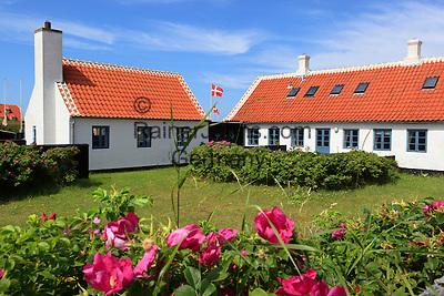 Denmark, Jutland, Gammel Skagen: Traditional Danish house | Daenemark, Juetland, Gammel Skagen: Daenische Ferienhaeuser