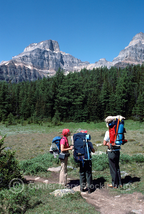 Banff National Park, Canadian Rockies, AB, Alberta, Canada - Hikers hiking in Larch Valley, Rocky Mountains, Summer Scenic - Model Released Person on left