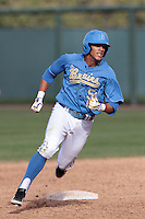 Kevin Williams #5 of the UCLA Bruins runs the bases against the Washington State Cougars at Jackie Robinson Stadium on March 24, 2012 in Los Angeles,California. UCLA defeated Washington 12-3.(Larry Goren/Four Seam Images)