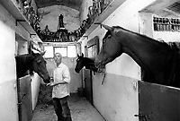 © Francesco Cito / Panos Pictures..Siena, Tuscany, Italy. The Palio. ..This retired jockey is a local hero, having won the Palio three times. He now works in a stable decorated with the trophies he won in his career...Twice each summer, the Piazza del Campo in the medieval Tuscan town of Siena is transformed into a dirt racetrack for Il Palio, the most passionately contested horse race in the world. The race, which lasts just 90 seconds, has become intrinsic to the town's heritage since it was first run in 1597.