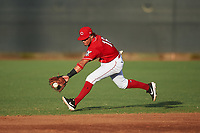 AZL Reds second baseman Sebastian Almonte (16) fields a ground ball during an Arizona League game against the AZL Athletics Green on July 21, 2019 at the Cincinnati Reds Spring Training Complex in Goodyear, Arizona. The AZL Reds defeated the AZL Athletics Green 8-6. (Zachary Lucy/Four Seam Images)