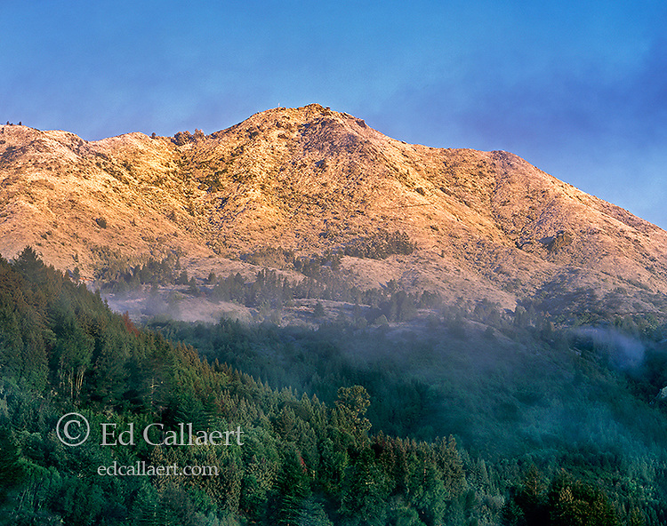 Rare Snowfall, Mount Tamalpais, Marin County, California