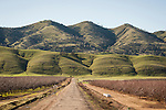 Three Sisters Coast Range of California