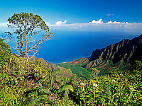 Kalalau Canyon on the island of Kauai in Hawaii is at the top of beautiful Waimea Canyon.  This view looks down to a beach that can be reached only by hikers or by boat.