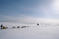 M.Seavey on Trail in Topkok Hills Between White Mtn & Nome<br /> 2004 Iditarod