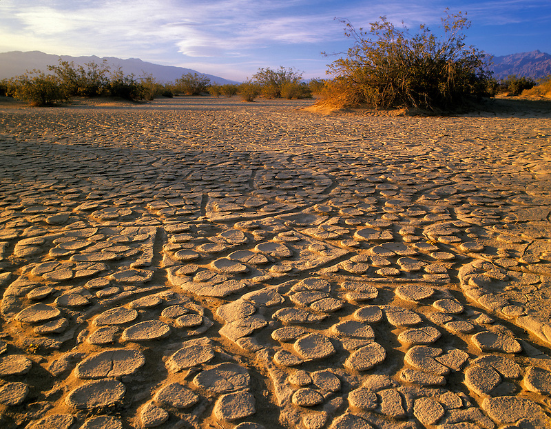 Dried mud pattern. Death Valley National Park, California