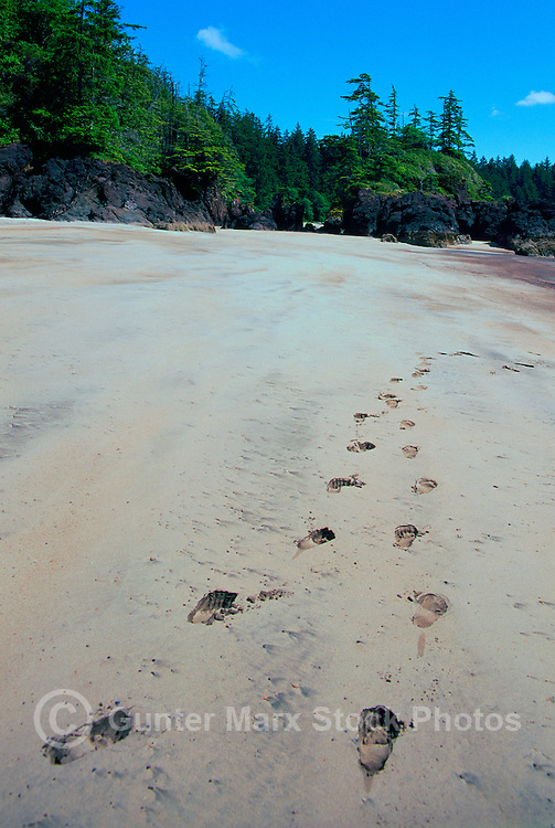 Cape Scott Provincial Park, Northern Vancouver Island, BC, British Columbia, Canada - Footprints in Sand on Beach at San Josef Bay