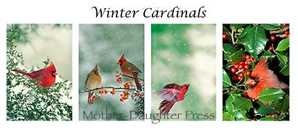 Winter cardinals card set