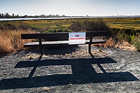 """No Fireworks"" sign on a bench at the MLK Regional Shoreline where grass along the shoreline and into the salt marsh is summer dry."