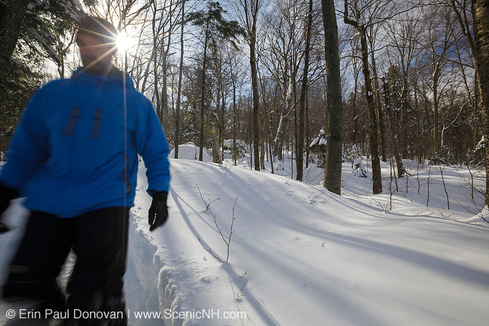 Man snowshoeing in the 990 acre Lafayette Brook Scenic Area in Franconia, New Hampshire during the winter months.