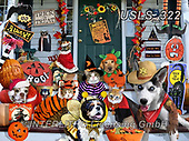Lori, CUTE ANIMALS, LUSTIGE TIERE, ANIMALITOS DIVERTIDOS, halloween, paintings+++++Trick Or Treat_Pets_4_27X20_72,USLS322,#ac#, EVERYDAY