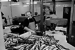 Isle of Man, Douglas, 1970s. Fishing industry fish processing factory 1978