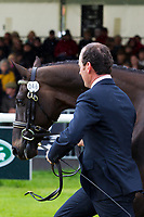 AUS-Tim Boland (GV BILLY ELLIOT) 2012 GBR-Land Rover Burghley International Horse Trial: FIRST HORSE INSPECTION-WITHDRAWN