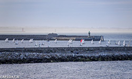 Lasers dinghies racing in Dun Laoghaire Harbour in the first night of DBSC racing of the 2021 season after COVID restrictions were lifted and competition returned