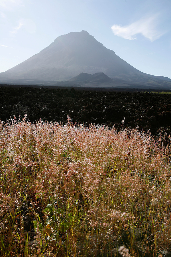Caldeira du volcan Fogo. Ile de Fogo. Vue du volcan depuis la caldeira