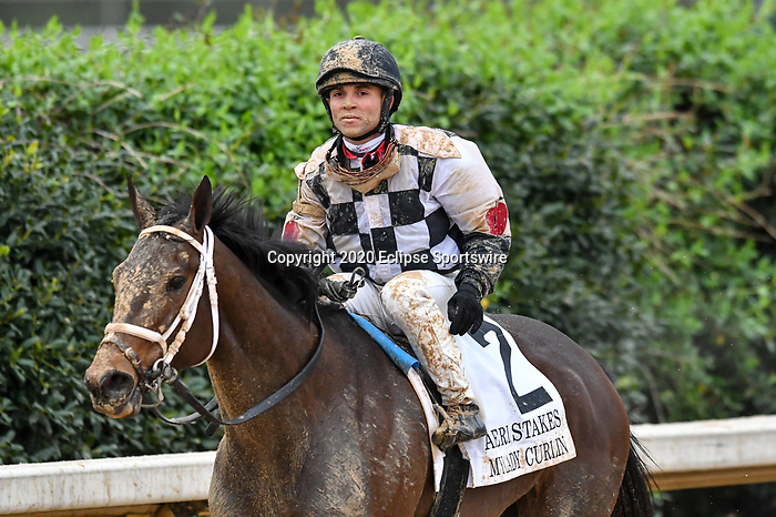 March 14, 2020: Mylady Curlin (2) with jockey Joel Rosario aboard during the Azeri Stakes at Oaklawn Racing Casino Resort in Hot Springs, Arkansas on March 14, 2020. Ted McClenning/Eclipse Sportswire/CSM (Photo by Ted McClenning/Eclipse Sportswire/Cal Sport Media)