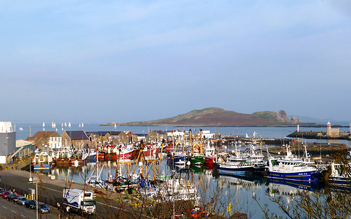 Howth's Fish Dock may provide a colourful setting for a quayside array of characterful seafood restaurants along the West Pier