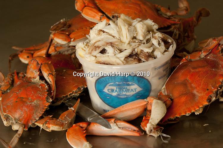 Dora Corbin picks crabs at the Smith Island Crab Coop
