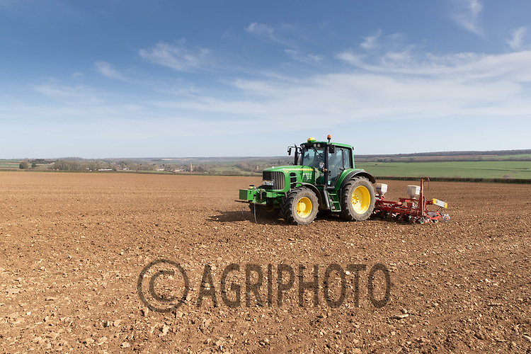 30-3--2021 Contractor drilling sugar beet in Rutland<br /> ©Tim Scrivener Photographer 07850 303986<br />      ....Covering Agriculture In The UK....