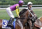 Bubbly Jane, Kent Desormeaux up, joins in post parade before finishing second in the Grade III Robert G. Dick Memorial Stakes at Delaware Park.  Stanton, DE, July 9, 2011. (Joan Fairman Kanes/Eclipsesportswire)