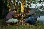Fishing Cat (Prionailurus viverrinus) biologists, Anya Ratnayaka and Maduranga Ranaweera, setting up camera trap in urban wetland, Urban Fishing Cat Project, Diyasaru Park, Colombo, Sri Lanka