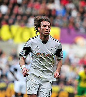 Swansea v Norwich, Liberty Stadium, Saturday 29th march 2014...<br /> <br /> <br /> <br /> Swansea's Michu