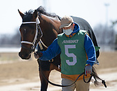 4th Bay Shore Stakes - Drain the Clock