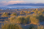 early evening on Hokitika beach looking north with the Paparoa Ranges in the distance, west coast, new zealand