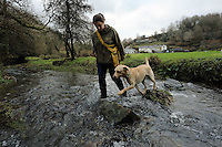 FAO JANET TOMLINSON, DAILY MAIL PICTURE DESK<br />Pictured: A dog is taken for a walk in the stream Wednesday 23 November 2016<br />Re: The Dog House in the village of Talog, Carmarthenshire, Wales, UK
