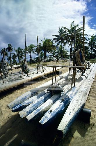 Costa Verde (Coconut coast), Brazil. Jangada log fishing boats on an unspoilt beach with palm trees; Bahia State.