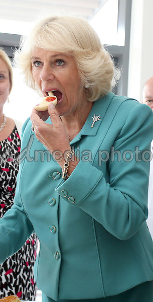 07 July 2015 - Wrexham, Wales - Camilla, Duchess of Cornwall tasting a cake  during her tour of Village Bakery in Wrexham as she continues her tour of Wales. Photo Credit: Alpha Press/AdMedia