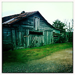 Barn near Oxford, Miss. in 2012..Photo taken with an IPhone 4 using Hipstamatic app. .©2012 Bruce Newman