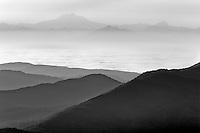 Sunrise and fog with Mt. Baker. Taken from Hurricane ridge, Olympic National Park. Washington