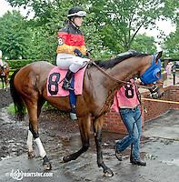 Bramwell with Silke Bruggeman aboard before The International Ladies Fegentri Race at Delaware Park on 6/10/13