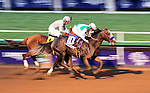 ARCADIA, CA - NOVEMBER 5: Arrogate #10, ridden by Mike Smith, finishes first ahead of California Chrome #4, ridden by Victor Espinoza, in the the Breeders' Cup Classic during day two of the 2016 Breeders' Cup World Championships at Santa Anita Park on November 5, 2016 in Arcadia, California. (Photo by Scott Serio/Eclipse Sportswire/Breeders Cup)
