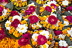 Flower offerings in Allahabad for Kumbh Mela Festival.