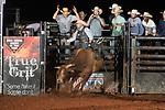 SEBRA - Forest, VA - 9.1.2018 - Bulls & Action